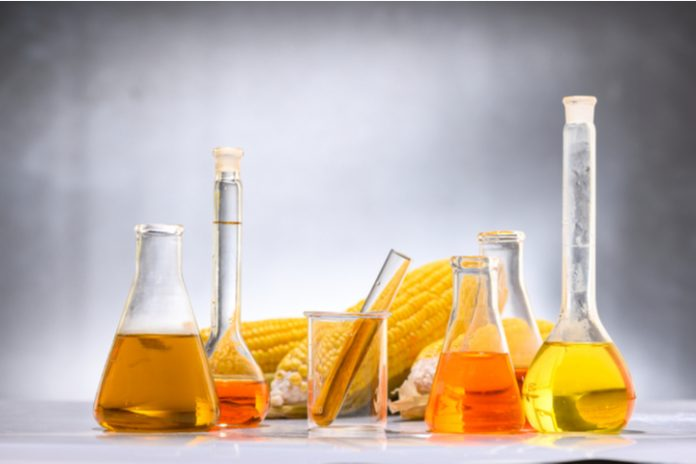 High Fructose Corn Syrup Market